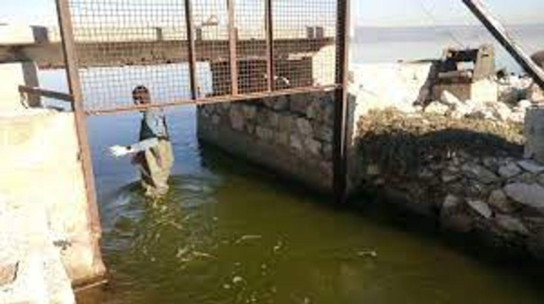 [ SOCIETE ] Golfe de Fos: Pêcheurs et politiques ouvrent la discussion