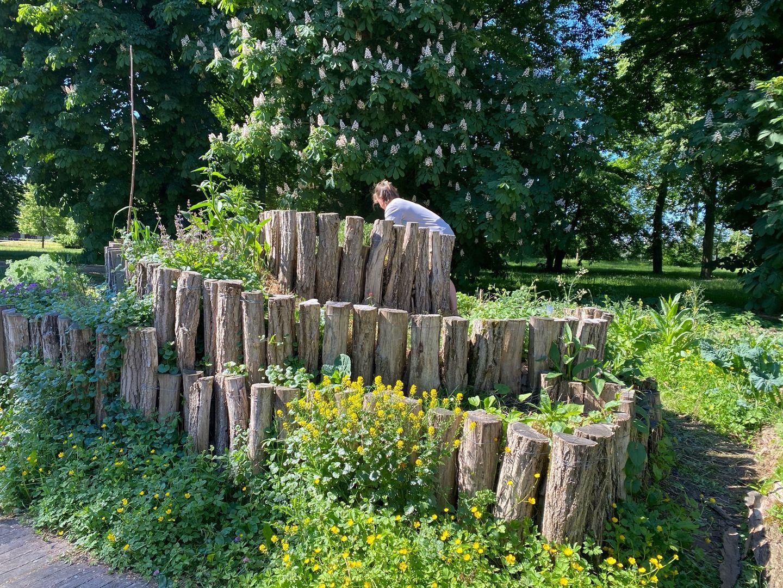 Le  jardin partagé sur le campus du Saulcy à Metz