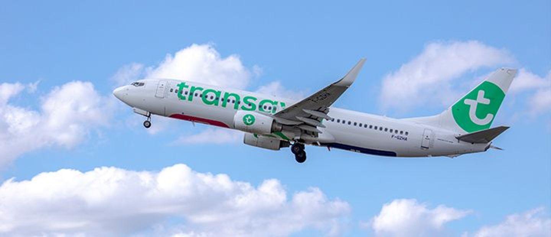 Transavia  - avion