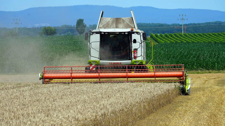 La fête de l'agriculture revient en Ille-et-Villaine  le 22 août 2021.