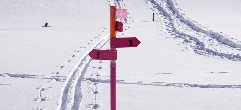 Vacances à la montagne : c'est encore possible, pour le moment