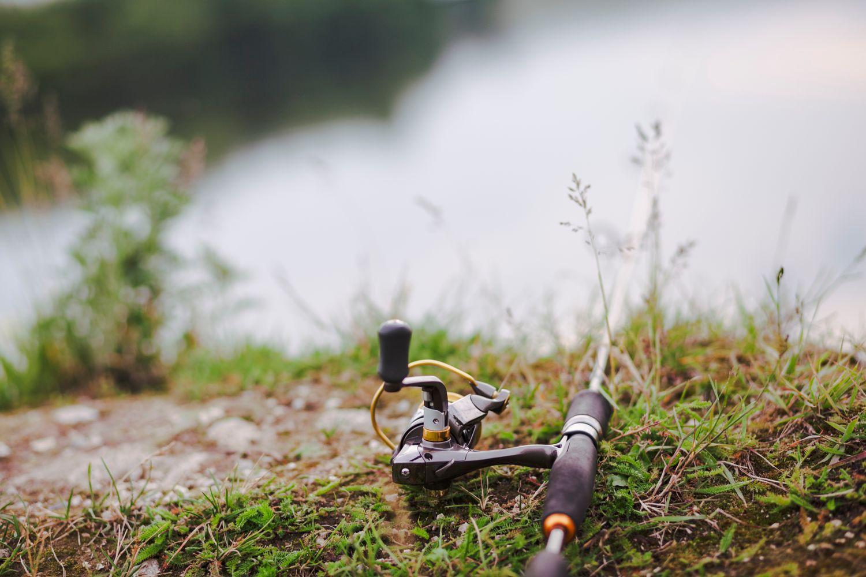 fishing rod green grass