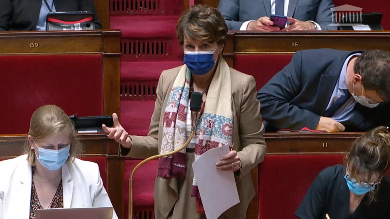 Annie Genevard Propose l'interdiction de drapeaux et de traditions dans l'assemblée nationale