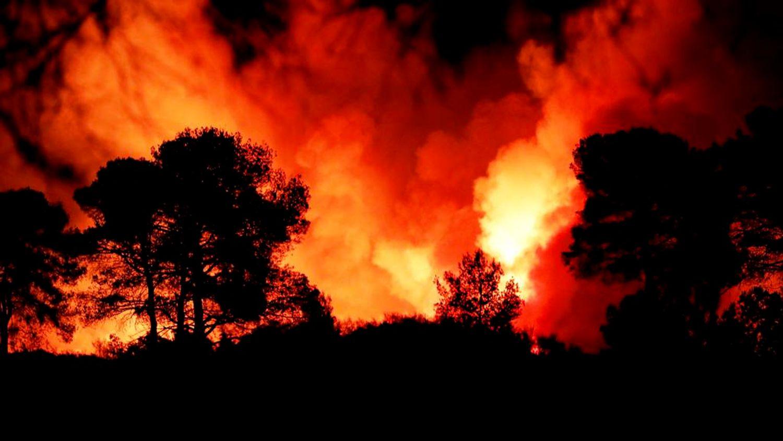 [ ENVIRONNEMENT ] Incendies dans le Var: Le feu gagne du terrain et le constat est déjà alarmant