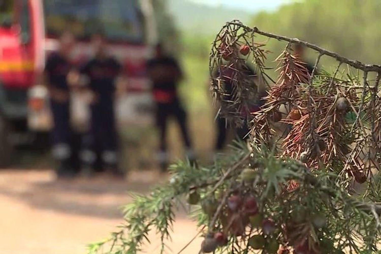[ ENVIRONNEMENT ] Boûches-du-Rhône: Les pompiers sur le qui-vive