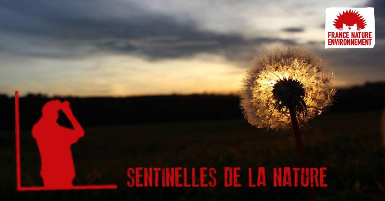 [ ENVIRONNEMENT ] France: Une appli au service de la nature