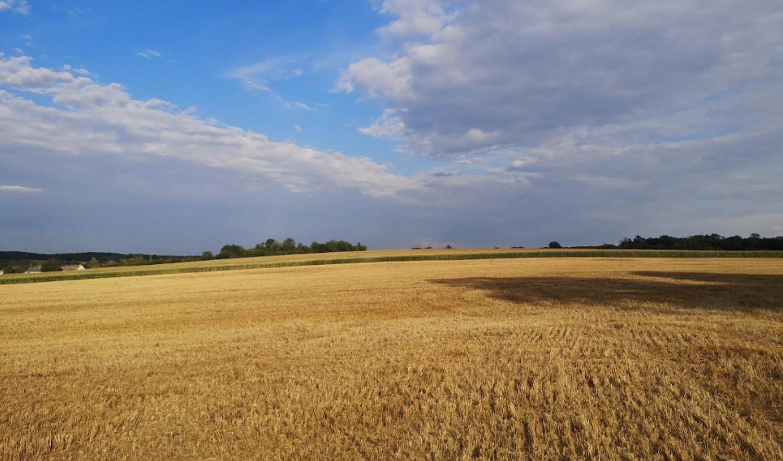 La campagne de Meurthe-et-Moselle