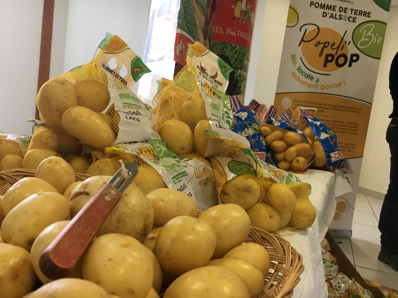 pommes de terre primeur bio Alsace IFLA