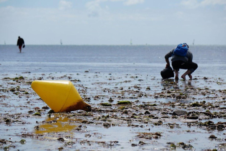 Un nouvel épisode de grandes marées cette semaine en Bretagne.