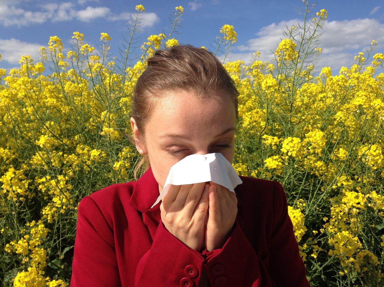 L allergie aux pollens est l'une des plus fréquentes.