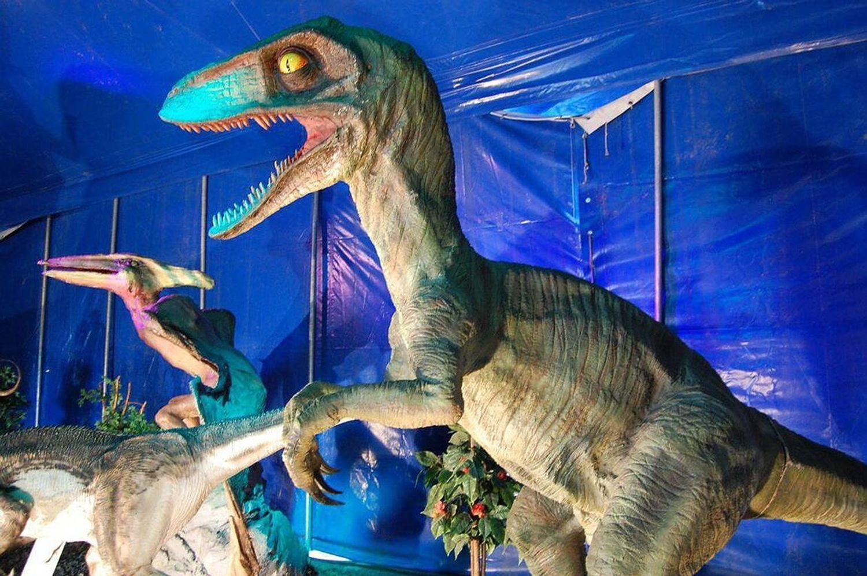 expo drive de dinosaures