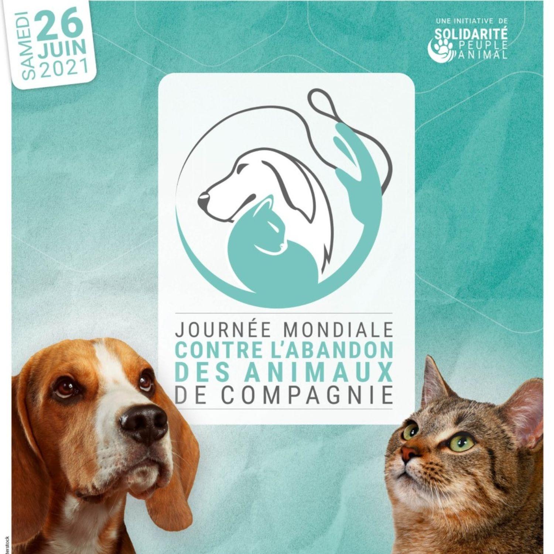 Journée mondiale contre l'abandon des animaux des compagnie