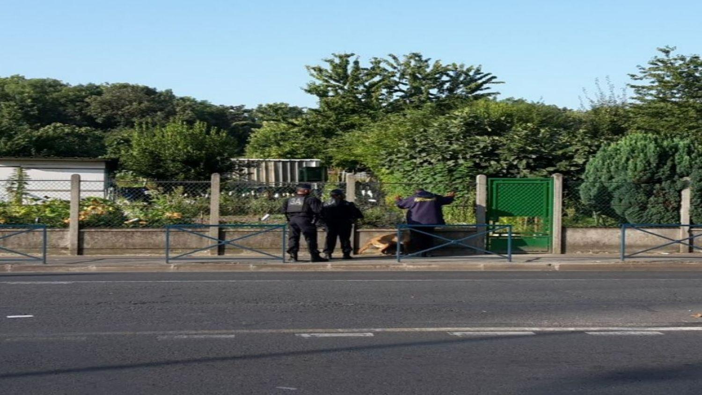 Aubervilliers : des manifestants évacués des jardins ouvriers ce jeudi matin