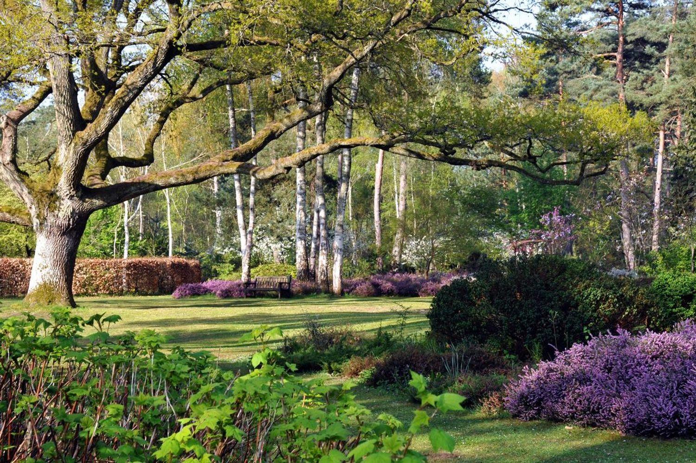 L'Arboretum est ouvert tous les jours de l'été.