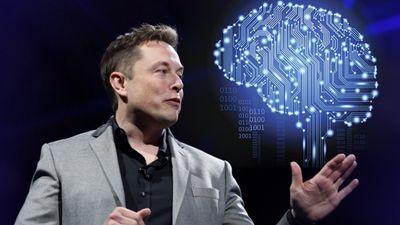 Neuralink : des implants pour contrôler un téléphone par la pensée ?