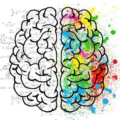 En visio... mais pas sans intérêt : le mois du Cerveau s'achève à...