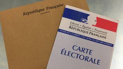 Référendum à Illkirch : 90% des votants opposés à l'interdiction de...