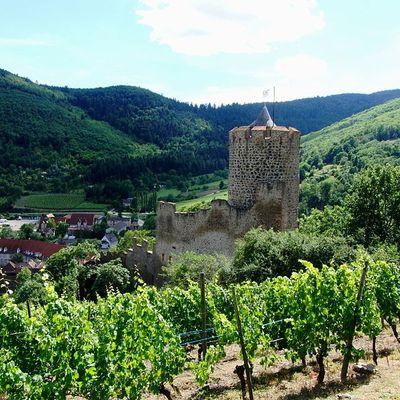 Kaysersberg : un mapping sur le château fait renaître le passé du lieu