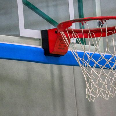 Basket-ball: réaction attendue des Béliers de Quimper
