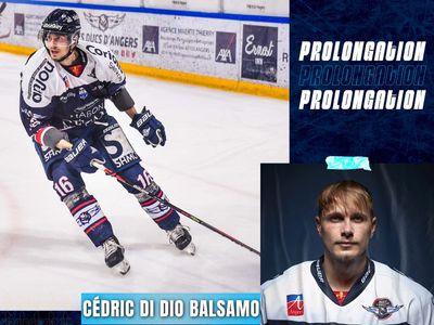 Une troisième saison chez les Ducs d'Angers pour Cédric Di Dio Balsamo