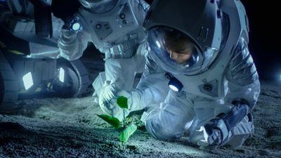 NASA : 500 000 dollars pour le chef qui cuisinera le meilleur plat...