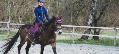 Equitation : 1 000 séances de découverte et de balades équestres...