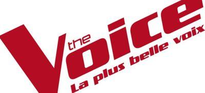 L'ÉMISSION THE VOICE EST ELLE TRUQUÉE ?