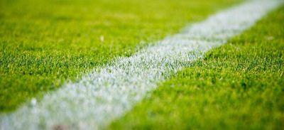 Paul Lasne : de la pelouse à la page blanche
