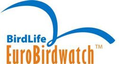 EuroBirdwatch : d�couverte des oiseaux migrateurs au plateau de la...