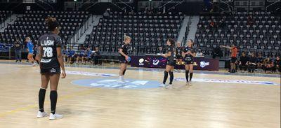 Les handballeuses dijonnaises n'ont rien pu faire face à Brest