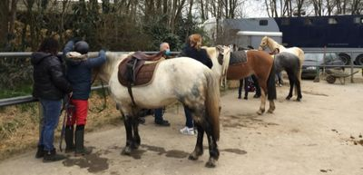 En Mayenne, des séances d'équitation pour des personnes en...