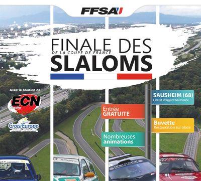 Finale de la Coupe de France des Slaloms