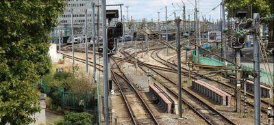 Après une chute d'arbre, trafic SNCF très perturbé sur l'axe entre...