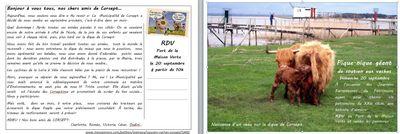 Une carte postale pour soutenir les vaches de Corsept !