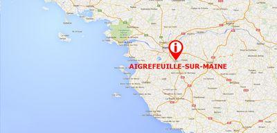 Aigrefeuille-sur-Maine : marche blanche en hommage à Marion, violée...