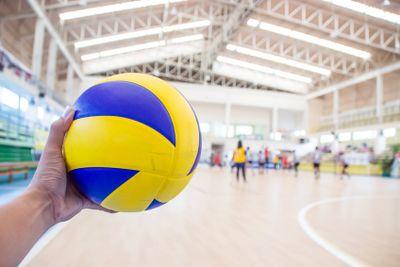 Volley : un nouvel entraîneur au NRMV