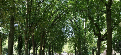 NANCY : Nature en Fête au Parc Sainte-Marie