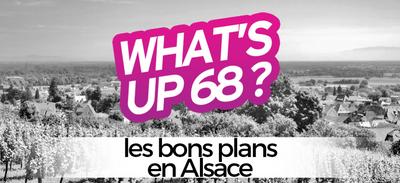 WHAT'S UP 68 : L'AGENDA DU 15 OCTOBRE