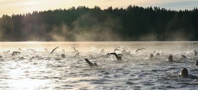 Premier ice-swimming en eau libre