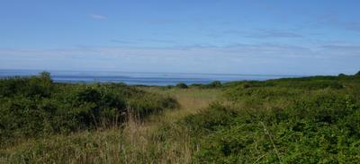 Reconquête des friches littorales à Moëlan-sur-mer.