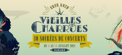 Le public finalement debout au festival Les Vieilles Charrues!