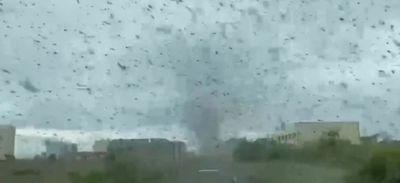 Un village russe victime d'une énorme tornade de moustiques (vidéo)