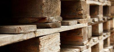 Environnement: allier design et écologie avec le bois de palette