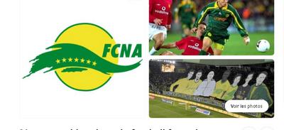 FC Nantes : un supporter dépité cherche un repreneur pour le club...