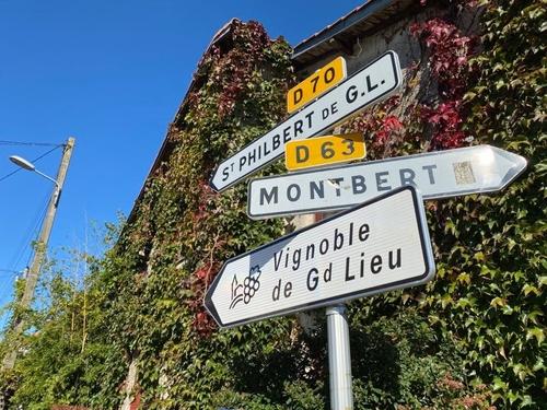 En Loire-Atlantique, la routes des vins est plus lisible