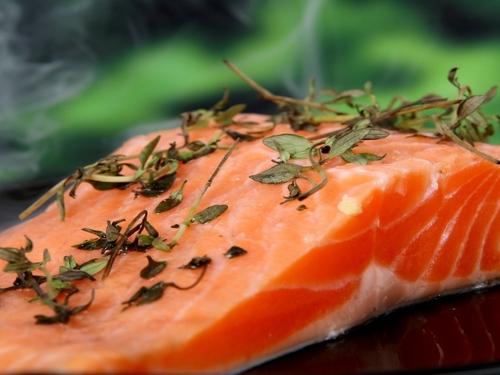 Une usine de saumons est en projet sur Guingamp
