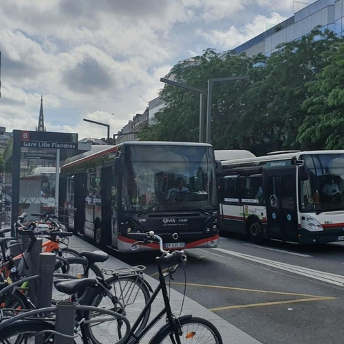 Métropole lilloise : ilévia recrute des conducteurs de bus