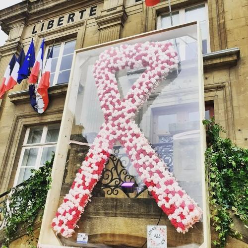 Octobre Rose : un ruban composé de 700 fleurs à Charleville