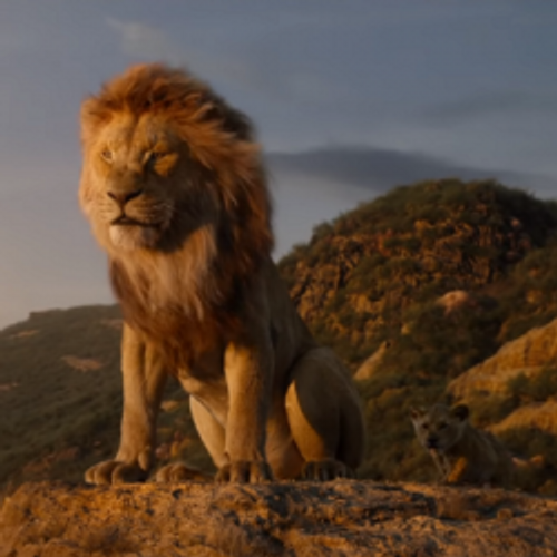 Bientôt Le Roi Lion ... la suite !