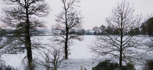 L'épisode neigeux conforme aux prévisions dans l'Ouest